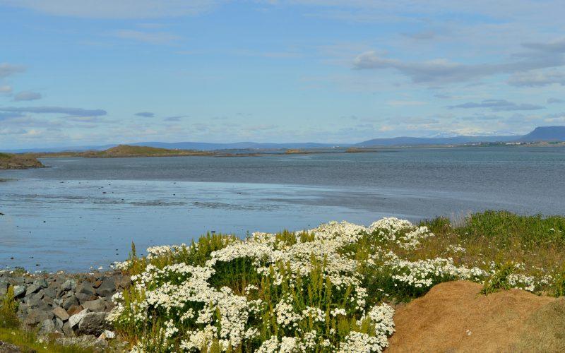 Island – Die schönsten Orte